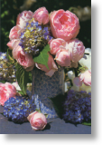 Hydrangeas and Peonies, Birthday Card for Her