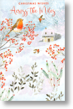 Robins, Across the Miles Christmas Card
