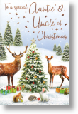 Special, Auntie and Uncle Christmas Card