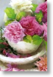 Bowl of Roses, Floral Blank Card