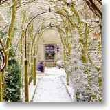 Archway, Christmas Card