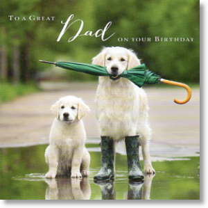 Golden Retrievers, Dad Birthday Card