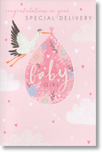 Special Delivery, New Baby Girl Card