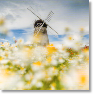 Whitburn Windmill, Scenic Blank Card